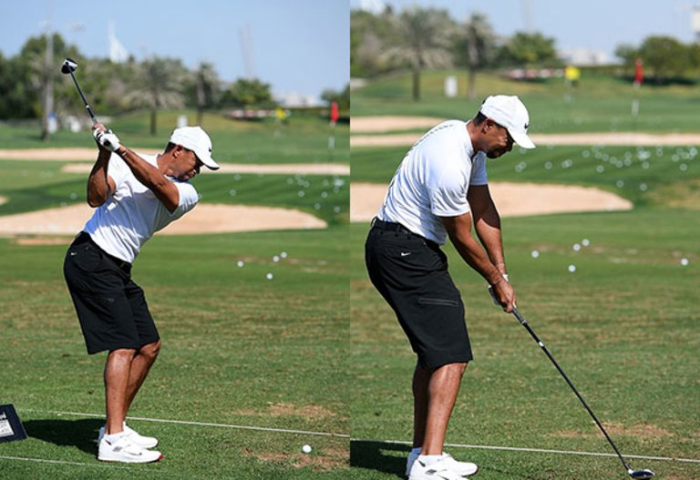 tiger-woods-in-shorts